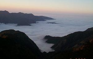 【阿里山图片】阿里山的另一面, 慢遊台灣, 像魚一樣, 慢慢的游