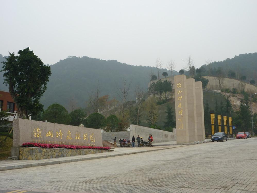 重庆铁山坪森林公园随拍