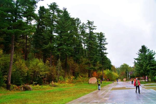伊春 五营国家森林公园