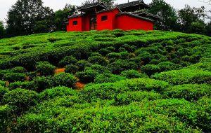 【恩施图片】恩施故事(7)— 绿野红寺映侗寨