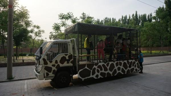 动物城大冒险——自驾大兴野生动物园