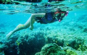 【北苏拉威西图片】带你体验不一样的印度尼西亚     🇮🇩美娜多(万鸦老)潜水之旅✈️