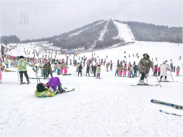 飘雪神龙行——神农架滑雪攻略篇