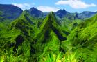 留尼汪狂野南部一日游+朗热万河谷+大加莱河瀑布(天然熔岩+瀑布午餐+危险角+接送)