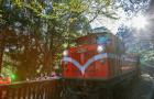 嘉义阿里山森林铁路小火车深度一日游(保证小车出行+市区酒店接送+可加购阿里山园区深度导览)