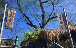 【连南图片】清远连南三天亲亲大自然之旅☀️