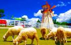 泰国华欣小瑞士绵羊牧场公园门票(欧式feel+绵羊亲密接触)