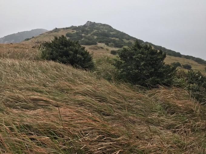 烟雨嵛山岛,诗意芦竹村