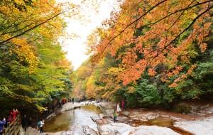 【南江图片】(023)最美的红叶景区——光雾山