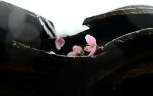 【连山壮族瑶族自治县图片】