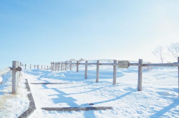 12月看一场北海道的雪