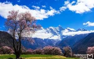 【雅鲁藏布江图片】西藏荼毒记-----心之所向,梦幻之旅