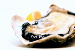 印相星空食记北京-当牡蛎邂逅龙虾