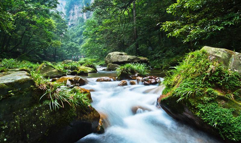 张家界国家森林公园景区电子票(四日通票 黄石寨索道
