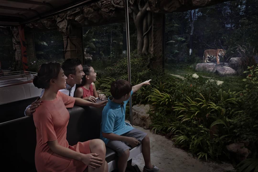 夜间野生动物园的园内之星是配备8种语言导览的小火车:,英语,普通话