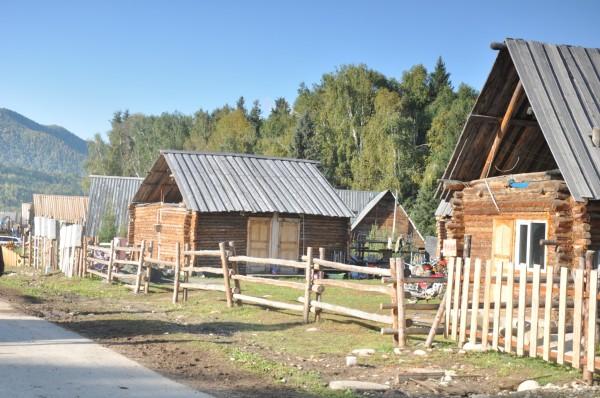 在禾木村,当地人的木头房子大都是尖顶长方形,有在地形高敞,干燥的