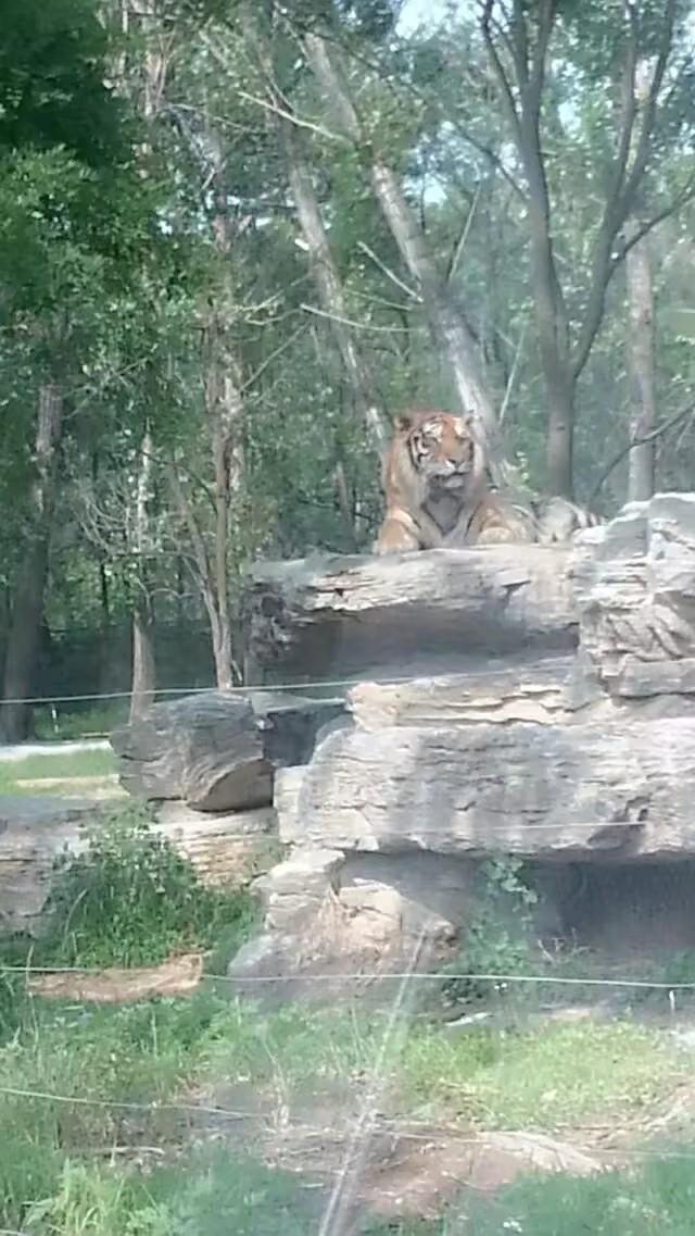 河北省秦皇岛野生动物园