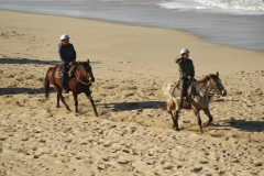 骑马,徒步,我们在半月湾和天使岛迎新春