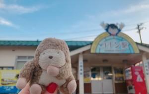 【鸟取市图片】2017.12/28-2018.1/4【母女关西跨年行】鸟取+大阪+京都+和歌山