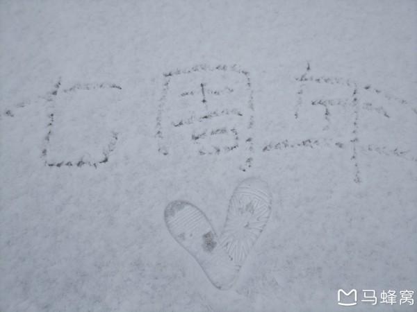 虾皮热恋日记 第七年 与老宁畅玩大东北 哈尔滨 雪谷 雪乡 雾凇岛 吉林图片