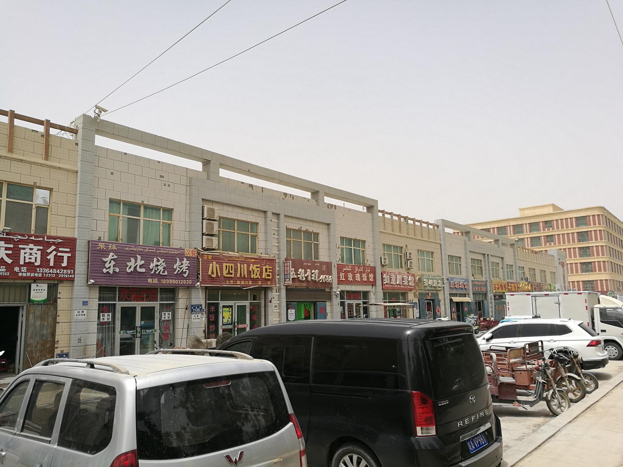 单车去西藏44天---顶着沙暴到达若羌县(369)