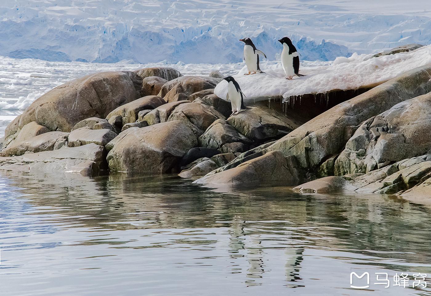 ·奇妙梦幻南极三岛极圈之旅看到别样精彩世界(待更新)_游记