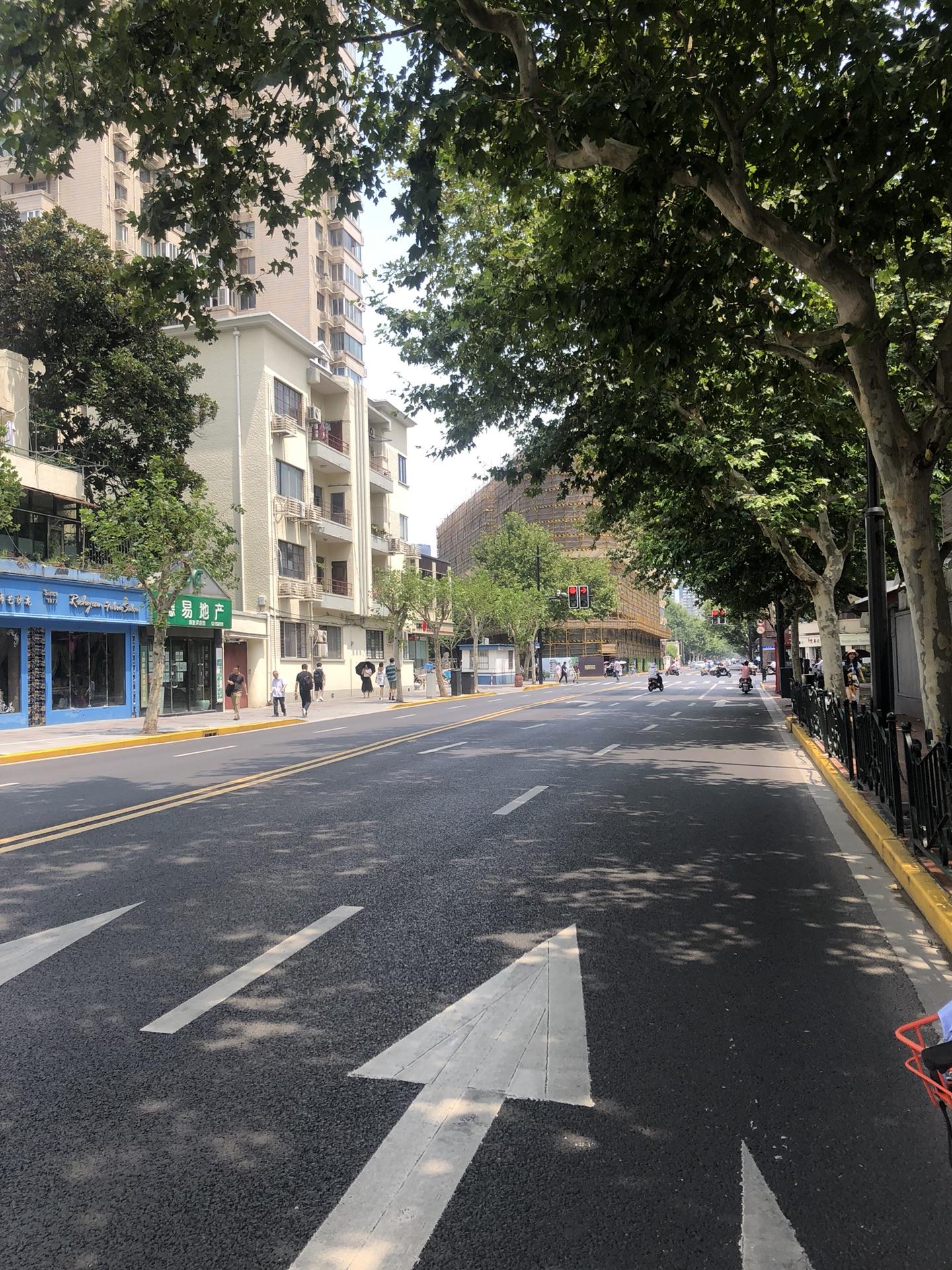 上海的重新(从心)之旅