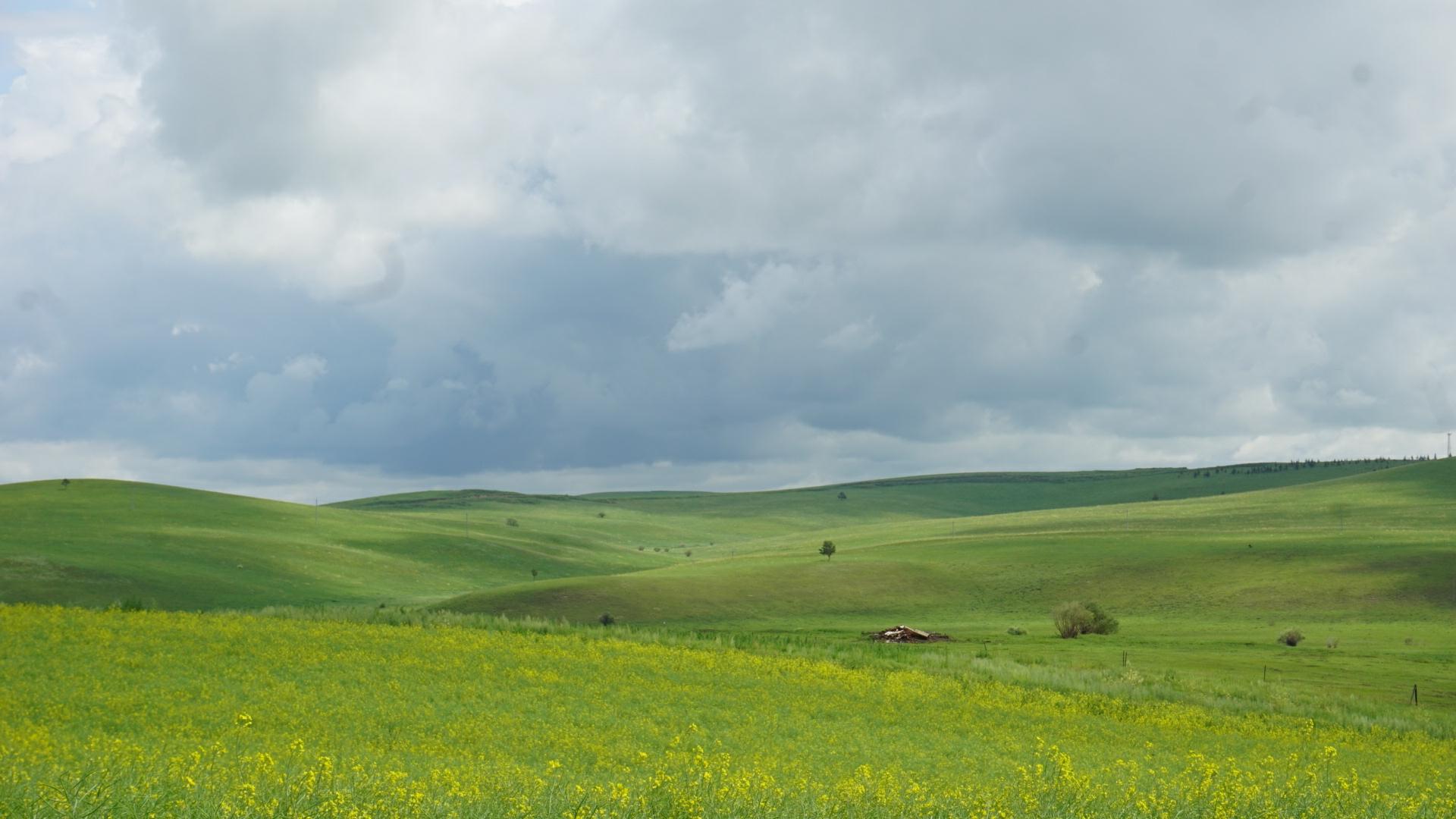 呼伦贝尔大草原,风景一直在路上。