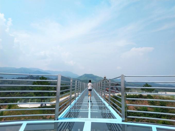 香草世界森林公园图片