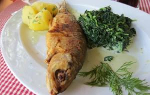奥地利美食-Gasthof Zauner