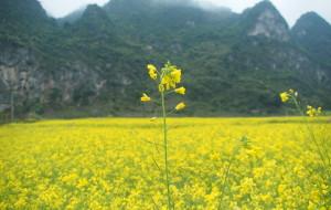 【坝美图片】溯溪问源,印象坝美------2012年1月云南缅甸之旅(二)