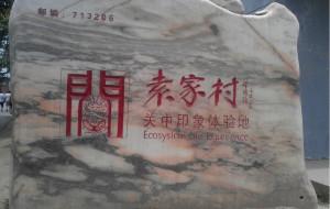 【咸阳图片】陕西最富有的村子——袁家村!