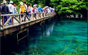 【阿坝图片】【九寨沟】美丽的邂逅,视觉的盛宴——11天川北甘南第二站