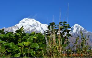 【尼泊尔图片】老年也徒步-尼泊尔行