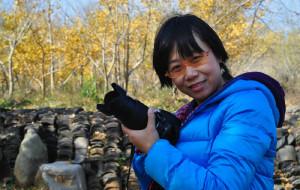 【随州图片】湖北随州洛阳镇千年银杏谷