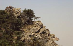 【临沂图片】看了大家爬蒙山的照片,来个你们没拍的图    2010.5.1