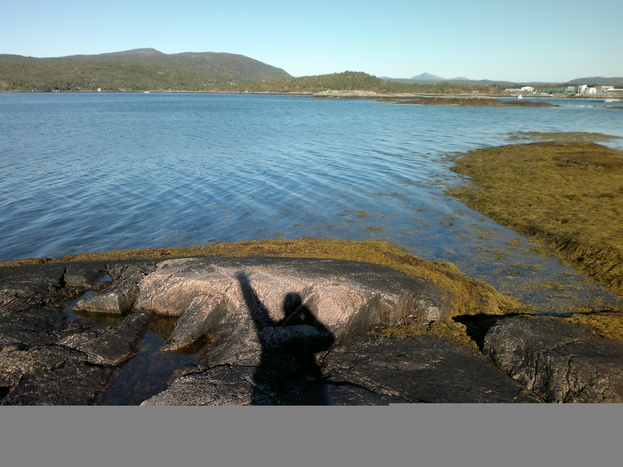 挪威---斯瓦尔巴群岛(北纬79度):深度自游行(3)
