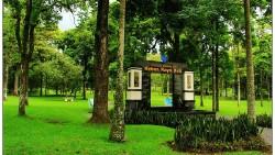 巴厘岛景点-乌布植物园(Botanic Garden Ubud)
