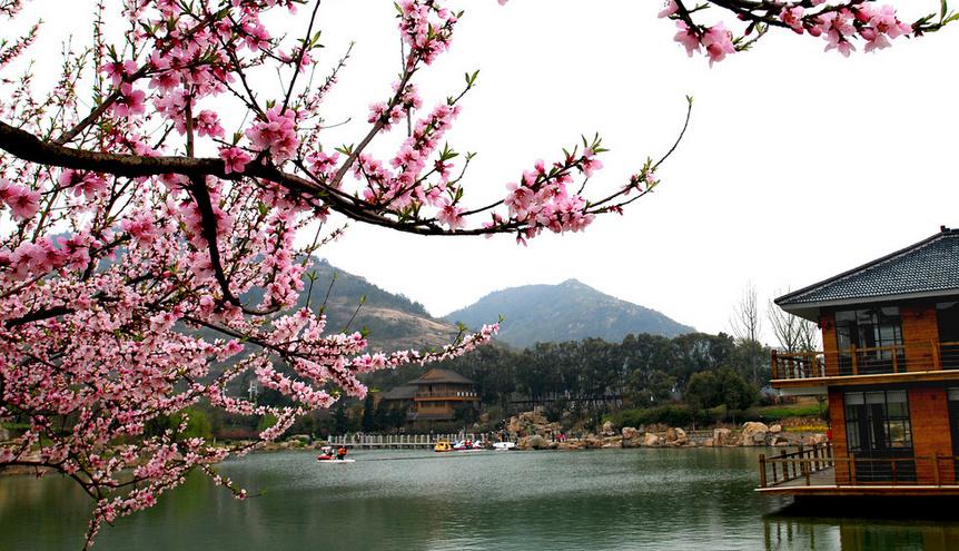 春天的苏州,是踏青春游绝对的好去处,在这里,不仅能够在山水间品味春色,更有各种时令鲜花可以欣赏。那么,苏州春天去哪里玩呢?苏州有哪些春天踏青的好去处呢。   一、太湖——赏梅   太湖的春天是极美的。2013太湖梅花节将在2月23日到3月31日举办,届时,大家不仅能够欣赏到娇艳的梅花,还可以参加很多文体活动,这绝对是个苏州春天踏青的好去处。    二、苏州乐园   苏州春天去哪玩,不妨来苏州园林来,这里北边可以娱乐玩耍,南边可以观景,是个玩赏合一的地方。   那么,苏州园林的门