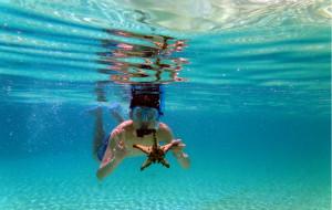 【宿雾图片】一海一世界,一人出行四人醉,宿雾&妈妈拍丝瓜岛