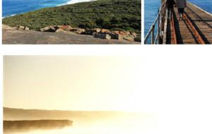 【袋鼠岛图片】左拥袋鼠,右抱考拉!袋鼠岛旅游小记
