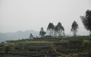 【邛崃图片】周五自驾游:天台山—平乐古镇—金鸡谷