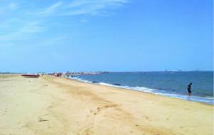 【潍坊图片】为了看一眼潍坊的海