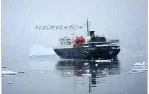 【南极洲图片】去南极