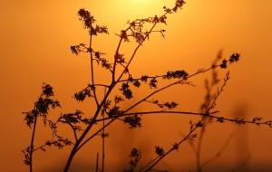 【阿尔山图片】七人七天在最不应该的季节去了最值得去的地方<塞外开荒北京至阿尔山自驾全攻略路书>(北京-达里诺尔湖-阿斯哈图石林-阿尔山国家地质公园-通辽-赤峰)完结!