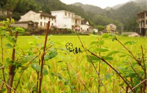 【皖南图片】九月,我从小皖南走过