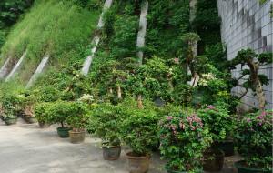 【梧州图片】独自穿行在桂东名城梧州的老城区
