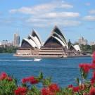 悉尼攻略图片
