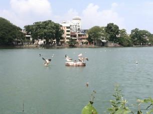 【科倫坡景點圖片】貝拉湖和水中廟