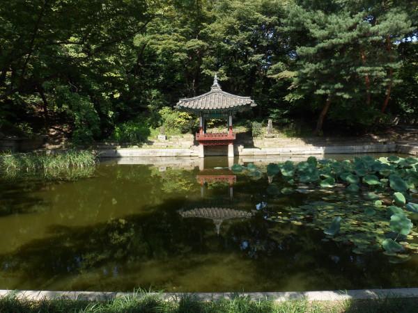 姐妹淘零韩语十一游韩国(首尔,济州岛)